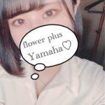 flower plus (フラワープラス)